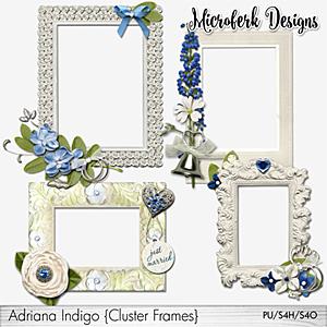 Adriana Indigo Cluster Frames