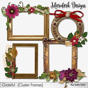 Grateful Cluster Frames