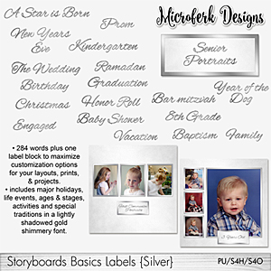 Storyboards Basics Labels - Silver