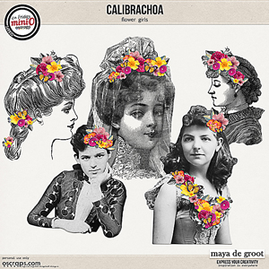 Calibrachoa Flower Girls