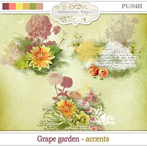 Grape garden (Accents)
