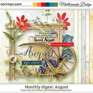 Monthly Digest: August (Mini kit)