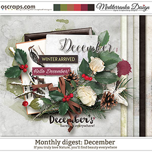 Monthly Digest: December (Mini kit)