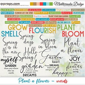 Plant a flower (Words)
