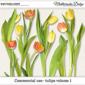 CU - Tulips vol. 1