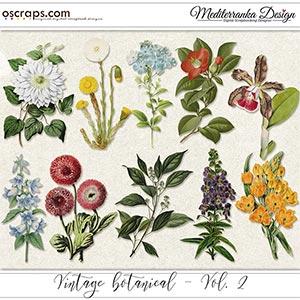 Vintage botanical - vol. 2