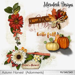 Autumn Harvest Adornments