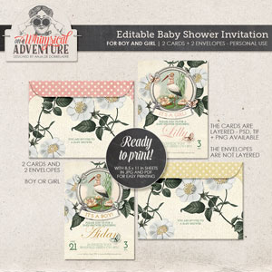 A Baby Shower Invitation