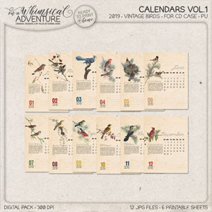 CD Case Calendar 2019