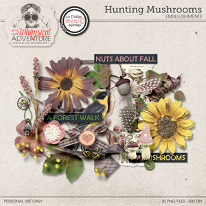 Hunting Mushrooms Elements Mini O