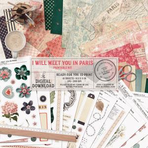 I Will Meet You In Paris Printable Kit