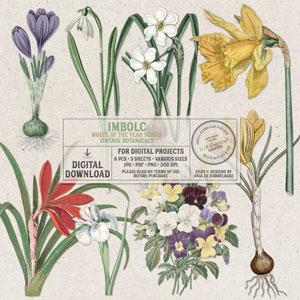 Wheel Of The Year Imbolc Vintage Botanicals