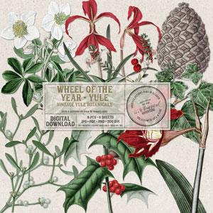 Wheel Of The Year Yule Vintage Botanicals