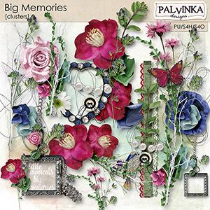 Big Memories Clusters