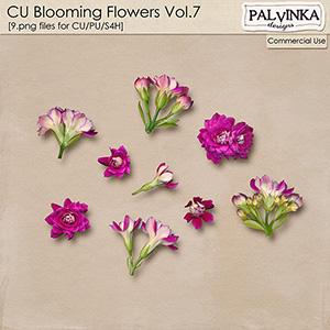 CU Blooming Flowers 7