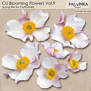 CU Blooming Flowers 9