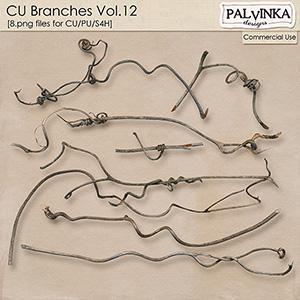 CU Branches 12