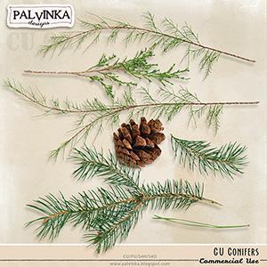 CU Conifers