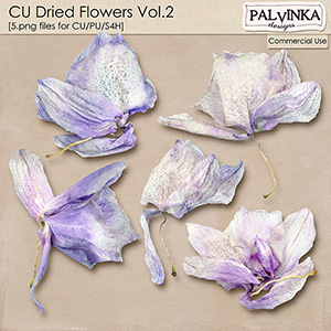 CU Dried Flowers Vol.2