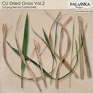 CU Dried Grass 2