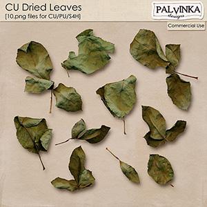 CU Dried Leaves