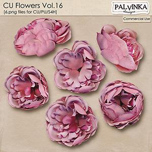 CU Flowers 16