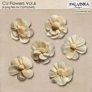CU Flowers Vol.6