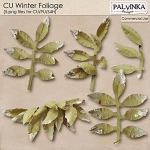 CU Winter Foliage