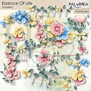 Essence Of Life Clusters
