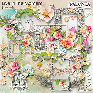 Live In The Moment Clusters