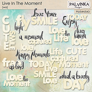 Live In The Moment WA