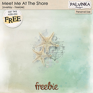 Meet Me At The Shore - Overlay - Freebie