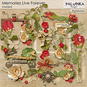 Memories Live Forever Clusters