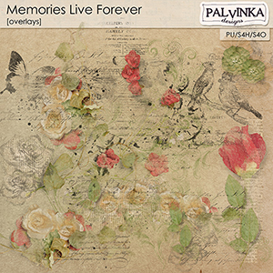 Memories Live Forever Overlays