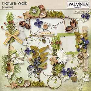 Nature Walk Clusters