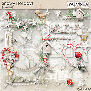 Snowy Holidays Clusters