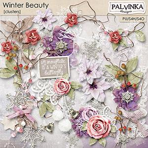 Winter Beauty Clusters