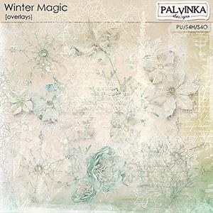 Winter Magic Overlays