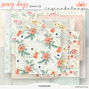SNOWY DAYS PAPERS 2