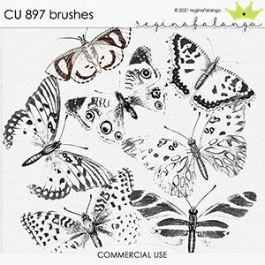 CU 897 BRUSHES
