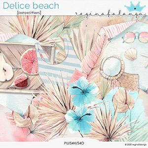 DELICE BEACH COMPOSITIONS