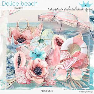 DELICE BEACH THE KIT