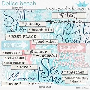 DELICE BEACH WORD ART