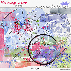 SPRING SHOT ACCENTS