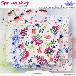 SPRING SHOT PAPERS 1