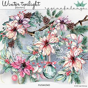 WINTER TWILIGHT CLUSTERS