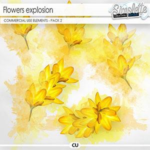 Flowers Explosion - pack 2 (CU elements)