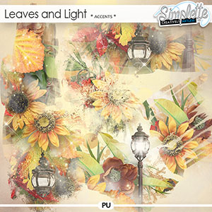 Leaves and Light (accents)