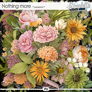 Nothing more (elements) by Simplette