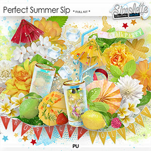 Perfect Summer Sip (full kit)